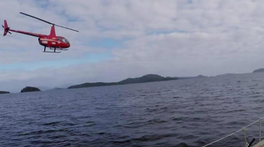 A chance meeting at sea in the Chilean Fjords